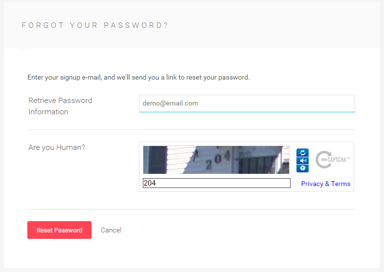 The Password Recovery Form